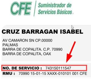 Numero de Servicio CFE